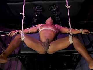 Gay bondage and BDSM be fitting of a powered couple