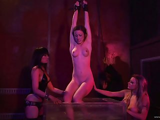Beautiful porn hottie gets pussy nailed raw and hardcore around group bondage