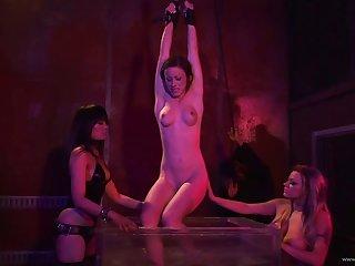 Beautiful porn hottie gets pussy nailed raw and hardcore around group bondage
